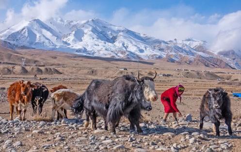 中国少数民族の中で唯一のペルシャ系民族である塔吉克族(タジク族)(何さん特別編)